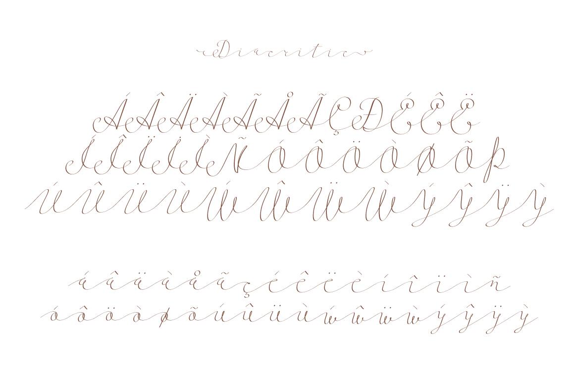Follow script font example image 10