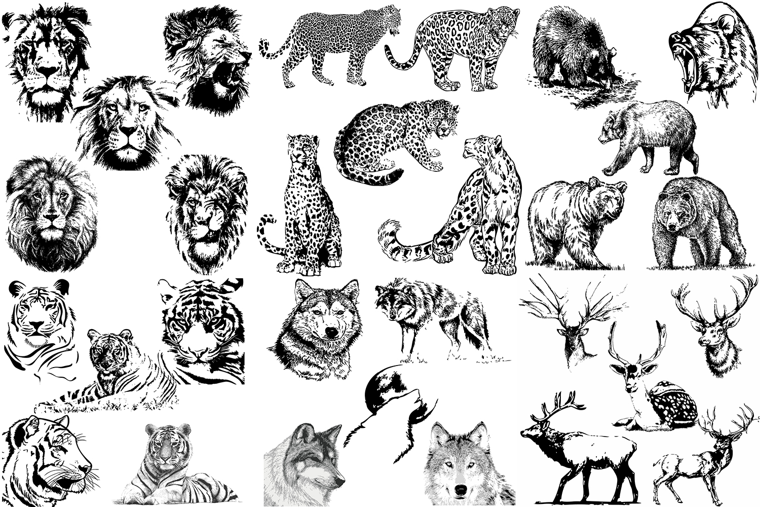 50 wild animals hand drawn silhouette vector illustrations example image 5