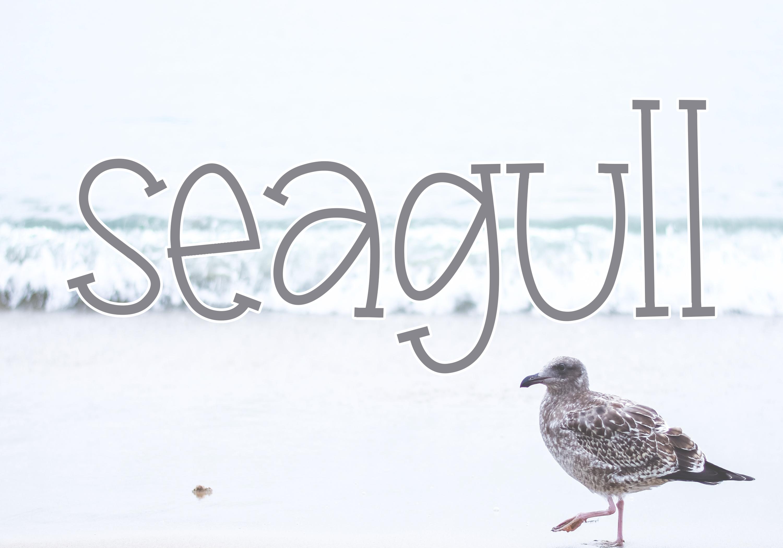 Seagull - A Fun Handwritten Font example image 7