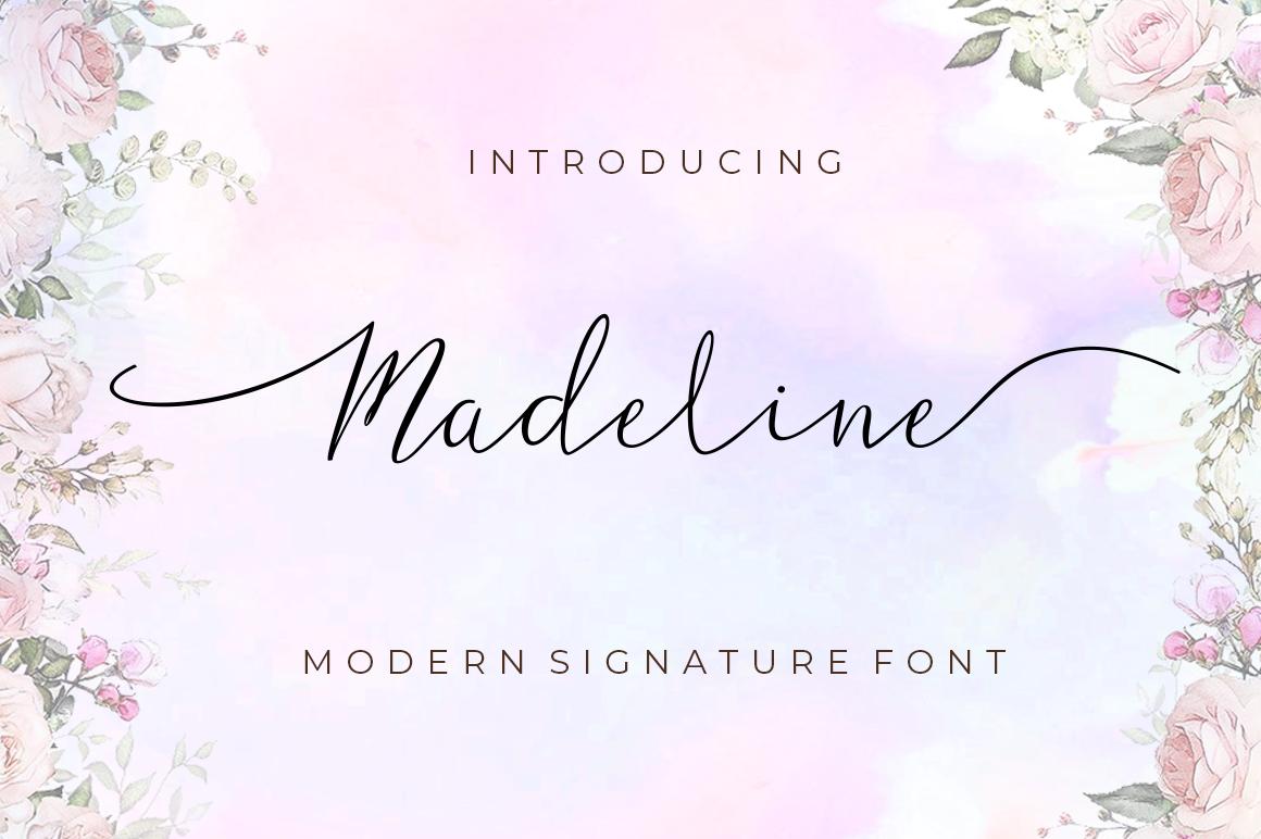 Script Font Bundle example image 6