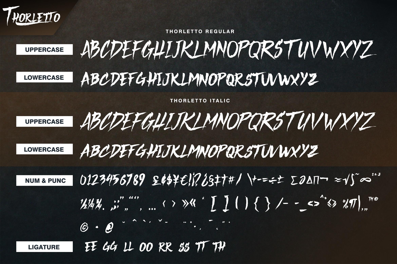 Thorletto example image 9