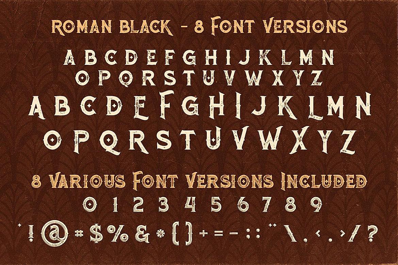 Roman Black - 8 Display Fonts example image 4