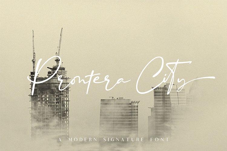 Blustori Tiller//Modern Script example image 7