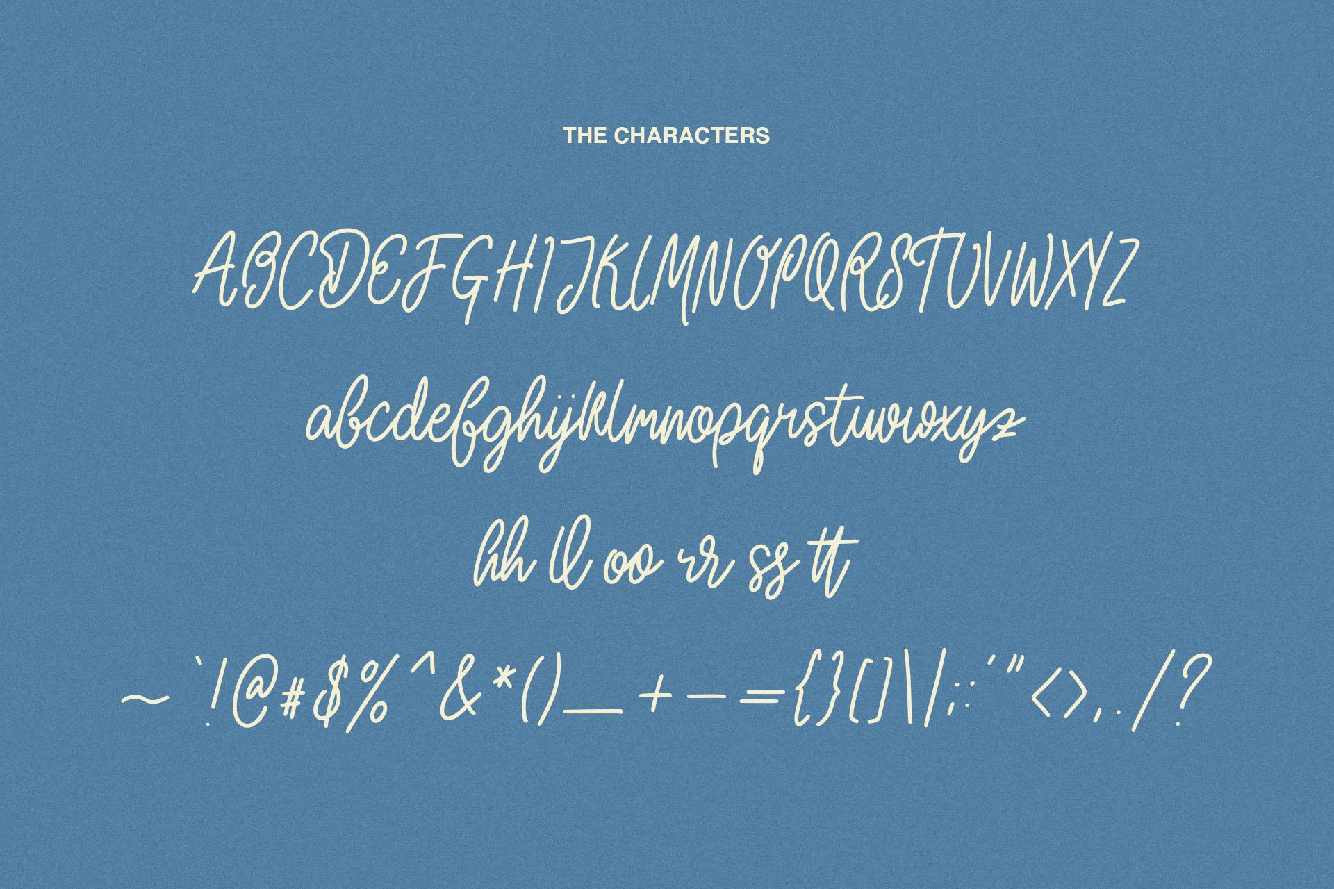 Howells Script Font example image 8