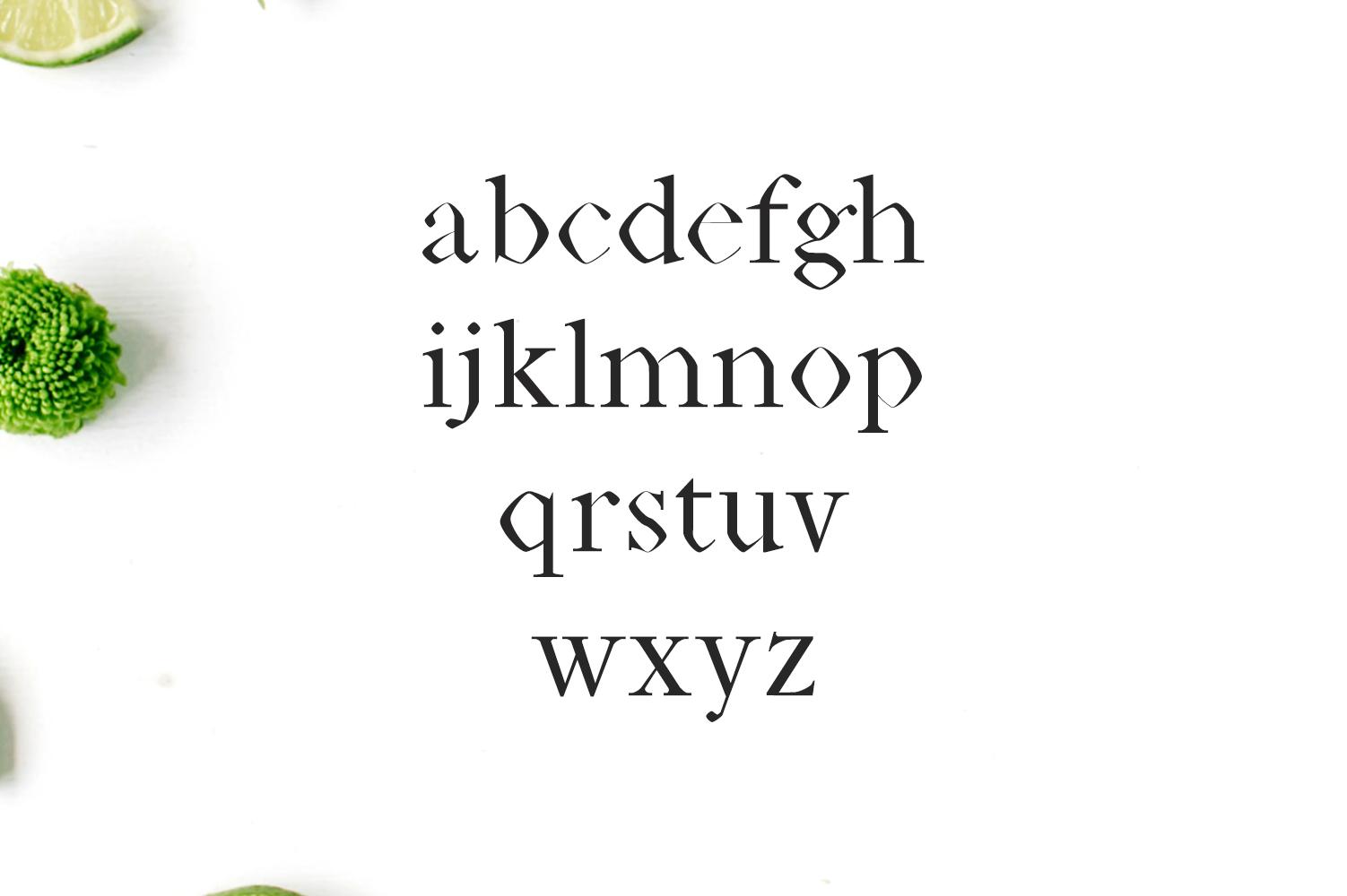 Janecia Serif Typeface example image 2