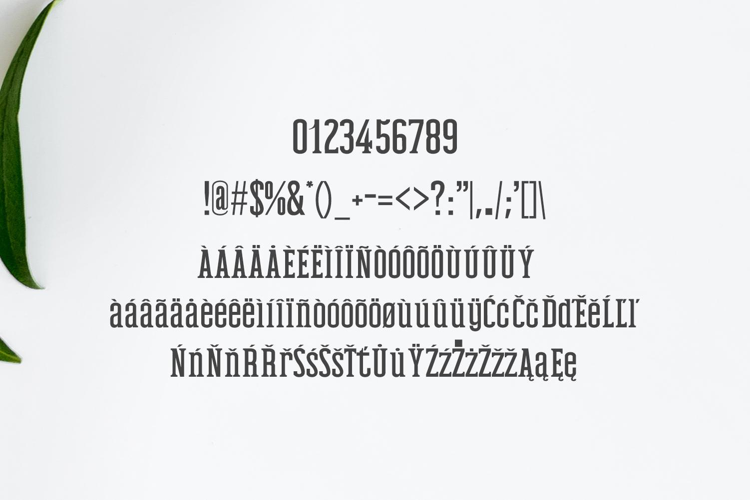 Mahlon Serif 3 Font Family Pack example image 5