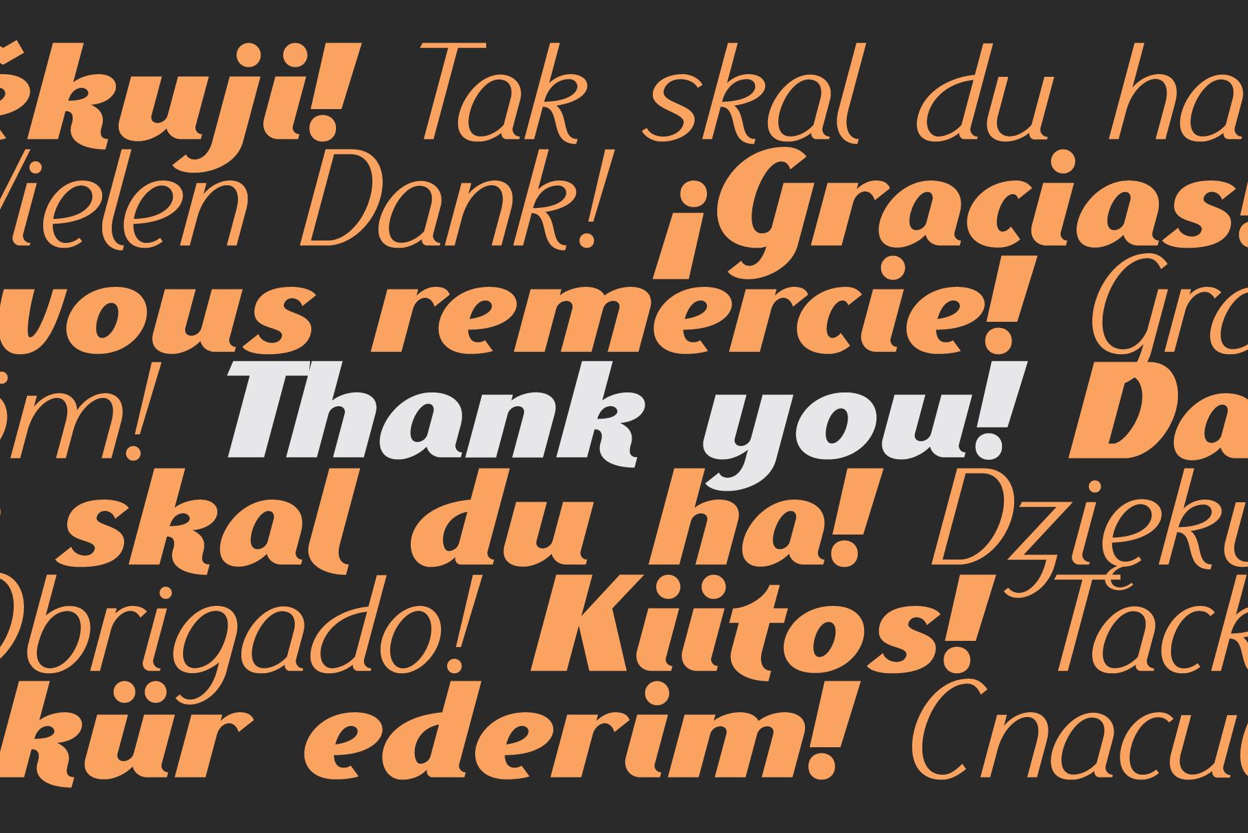 Ethna Italic example image 5