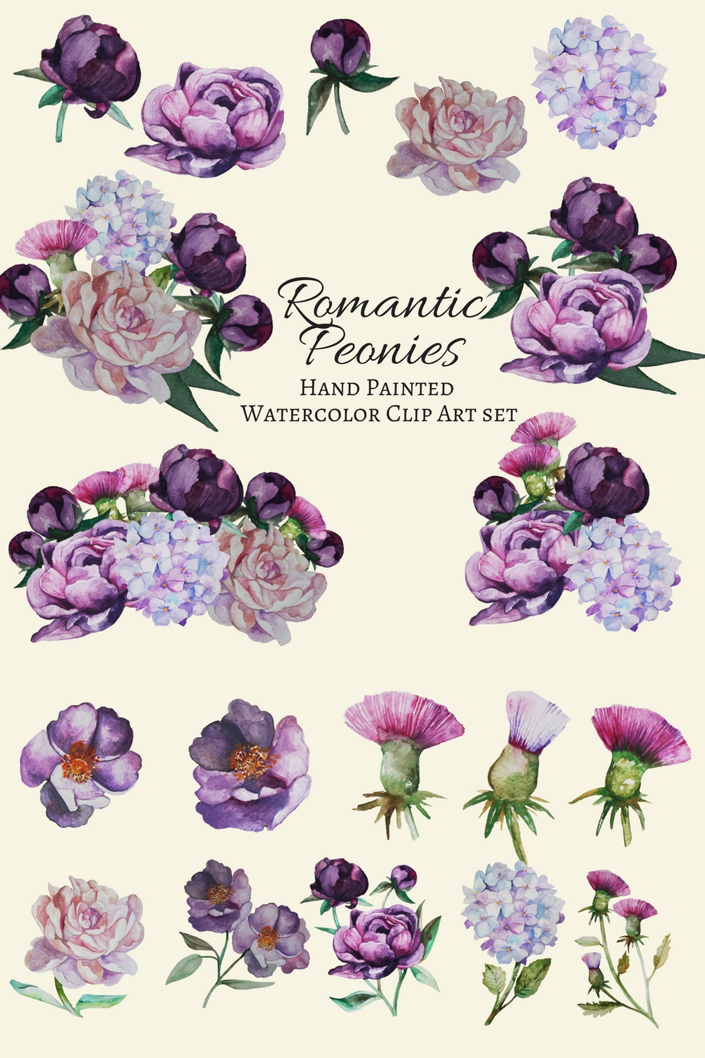 Romantic Peonies Hand Painted Clip Art Set example image 3