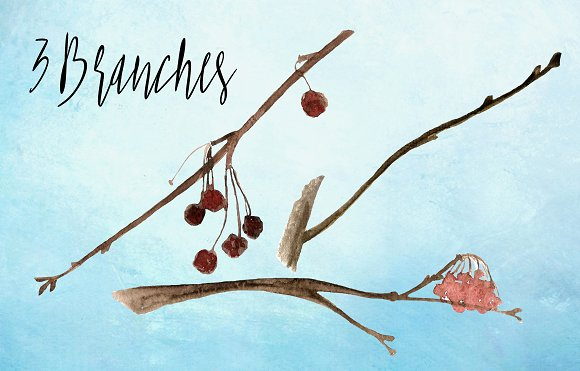 Watercolor Birds Clip Art example image 7