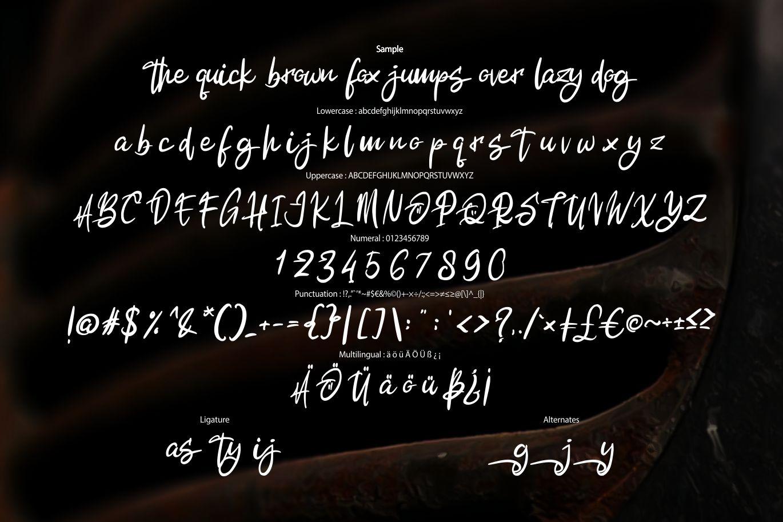 Alkatros   Grafyto Script Font example image 6