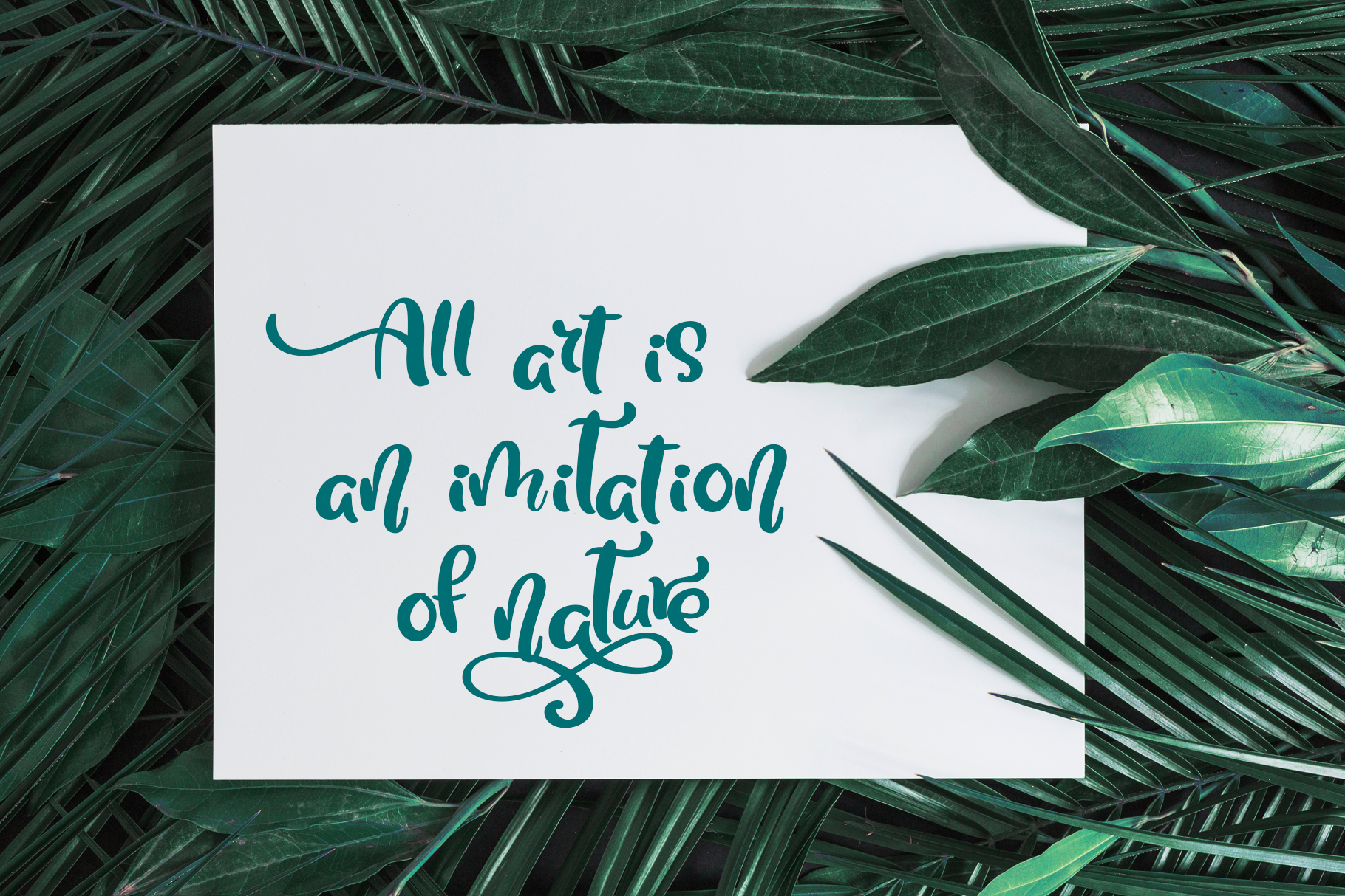 Tropical Summer Font example image 5