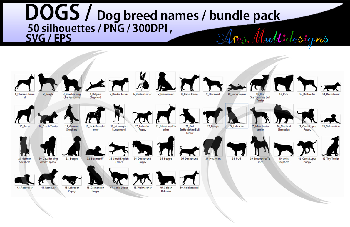 dog silhouette svg / 50 dog / dog breed names with pictures PNG / SVG / EPS / puppy/ Hq / vector / pets silhouette / animal silhouette example image 2