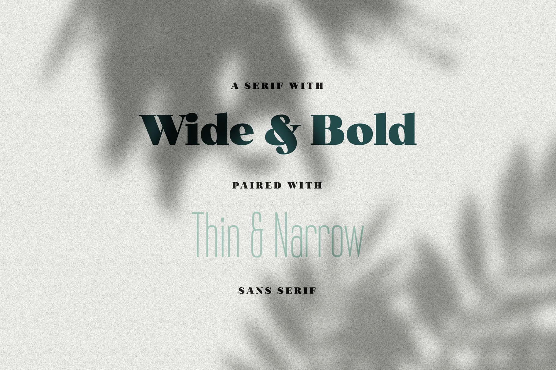 Norfolk Font Pair Bold & Narrow example image 2