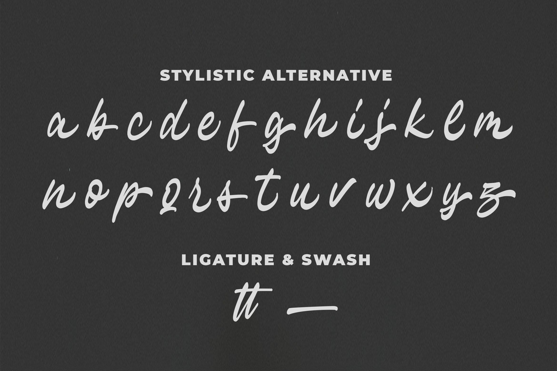 Hayline - Elegant Script Font example image 9