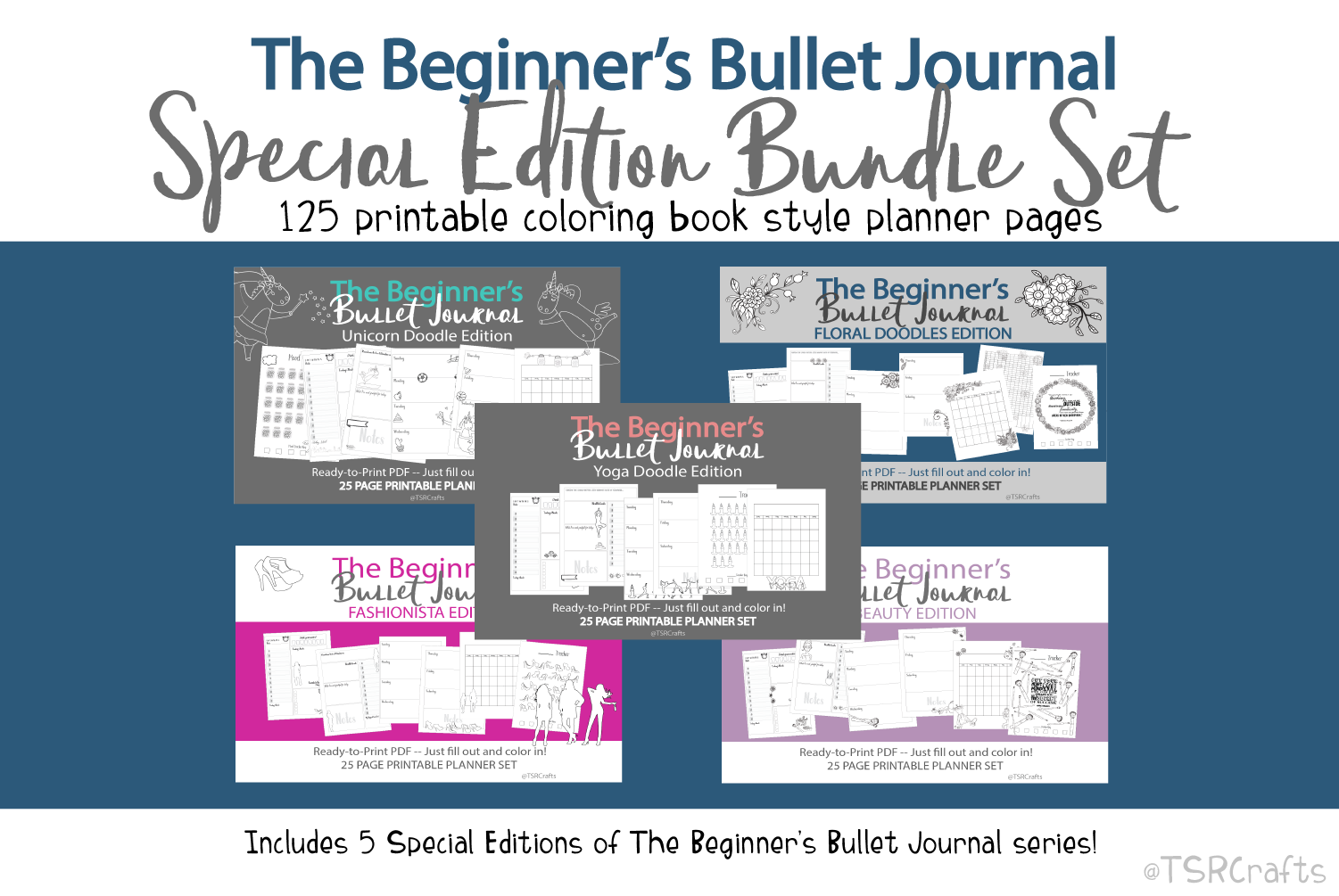 Beginner's Bullet Journal Printables Special Edition Bundle example image 1