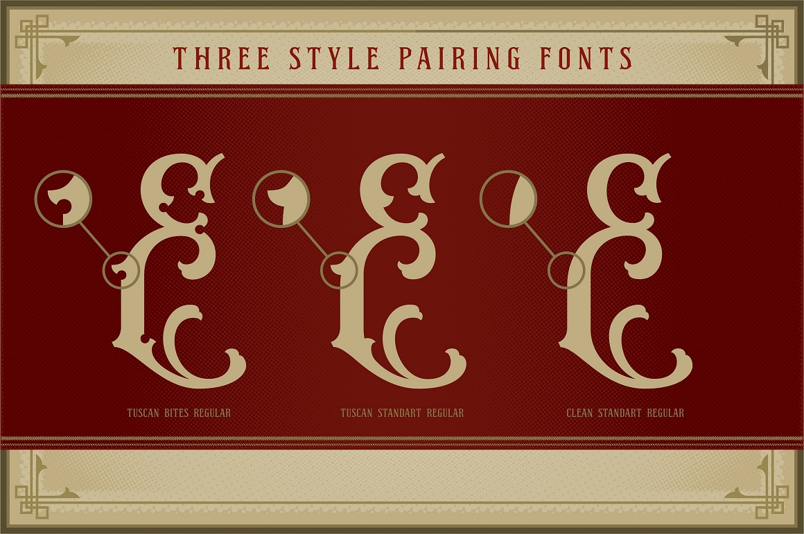 NS Emnhericans Vintage Pairing Fonts example image 6
