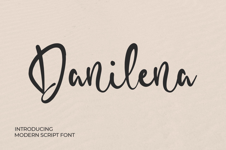 Danilena - Modern Script Font example image 1