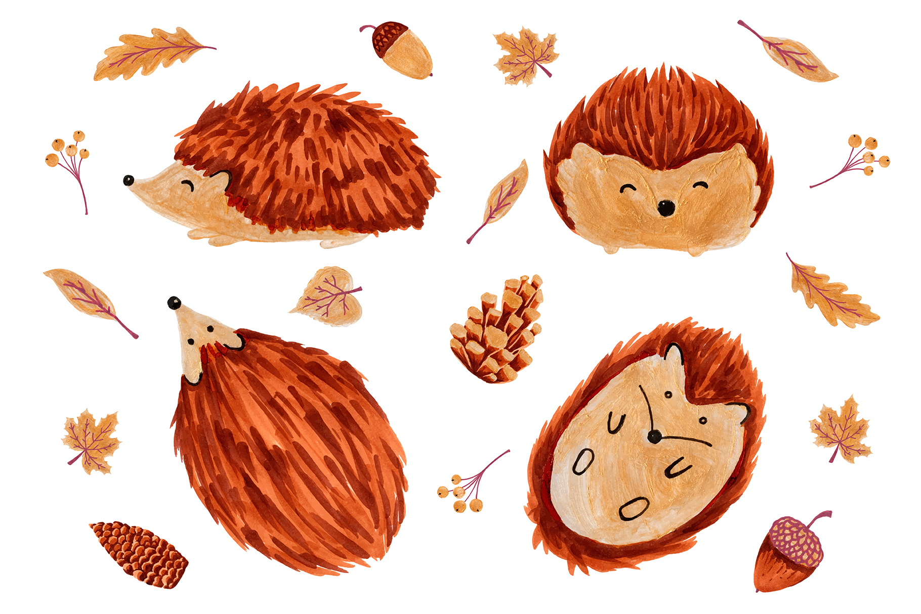 Cute Hedgehogs example image 1