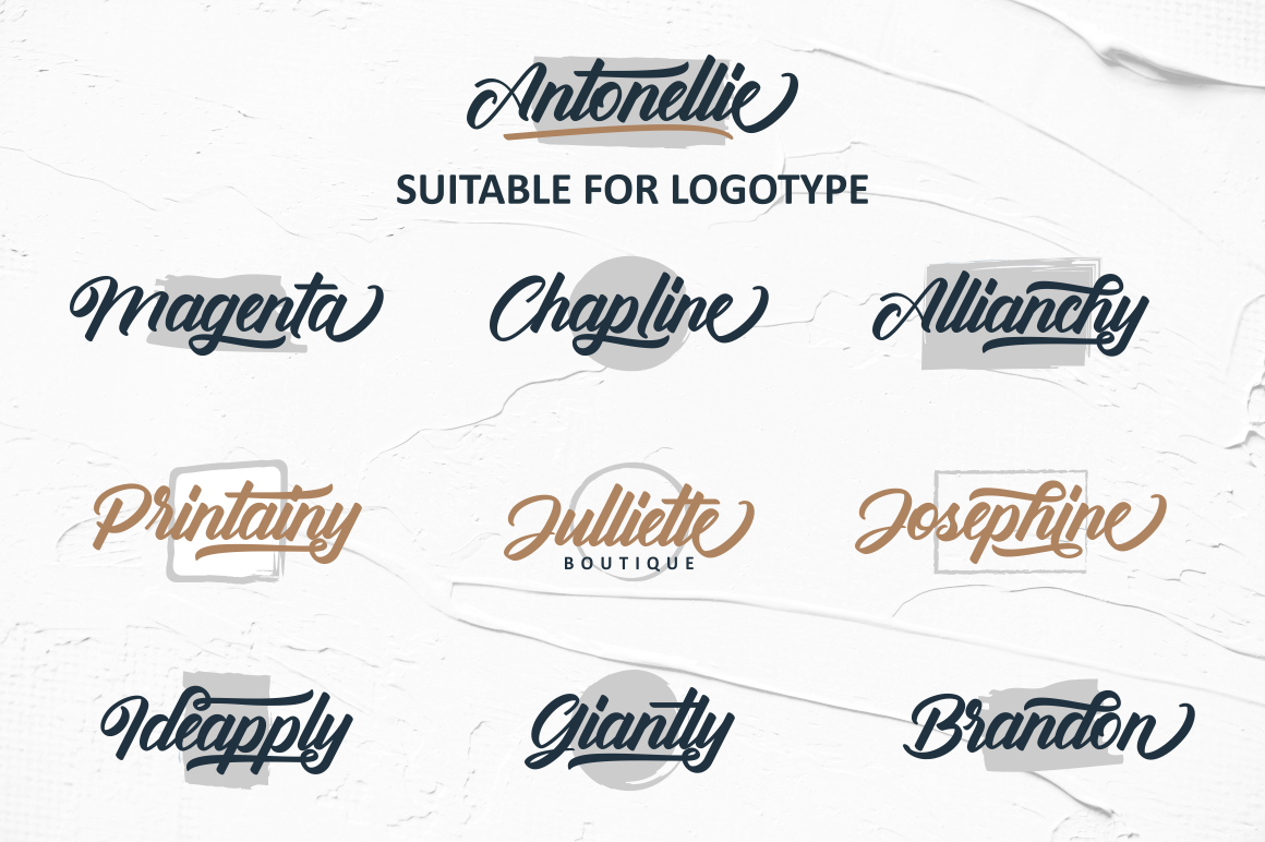 Antonellie Hand Lettered Script example image 3