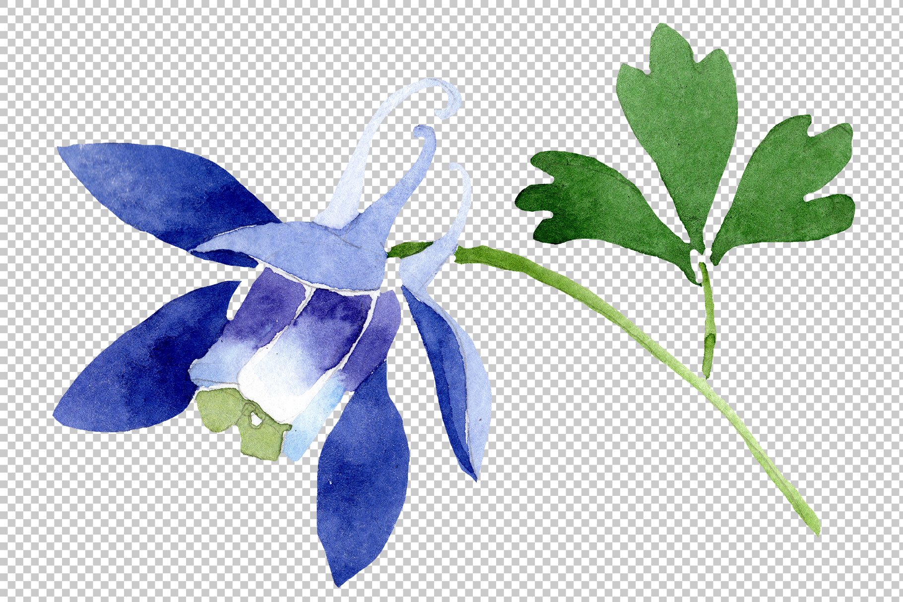 Flowers set PNG watercolor   example image 3