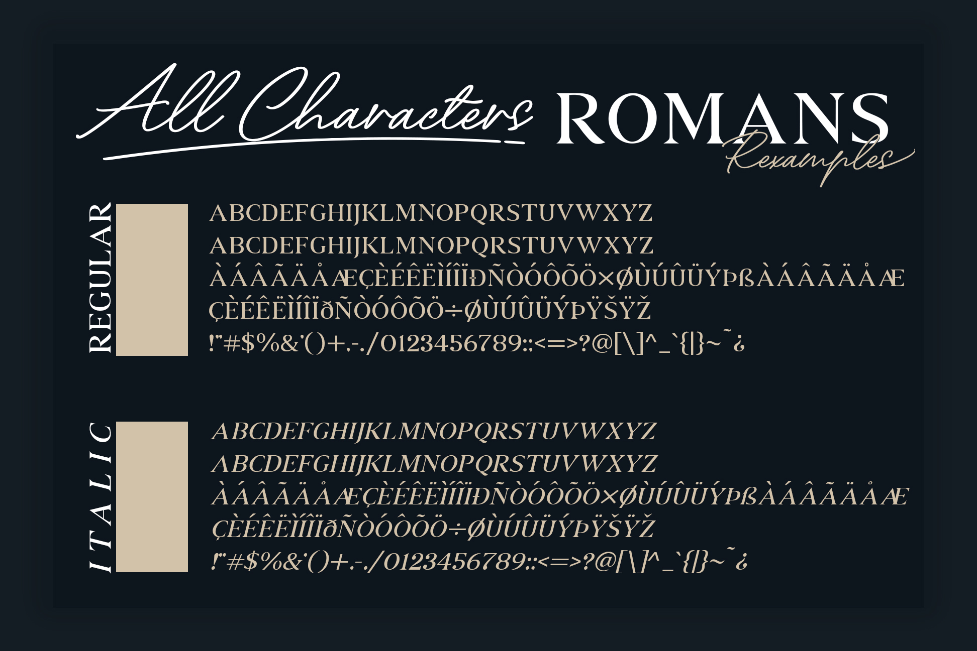 ROMANS Rexamples Font Duo example image 8