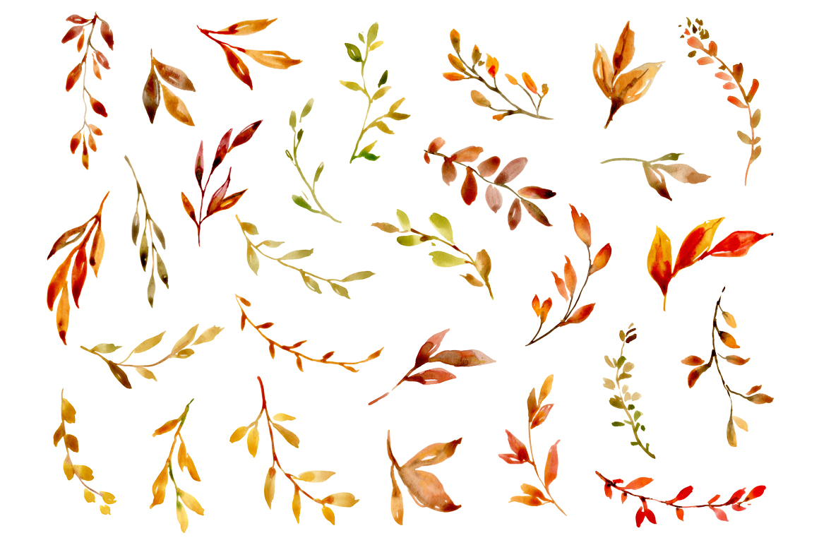 Watercolor Autumn Leaves & Branches example image 2