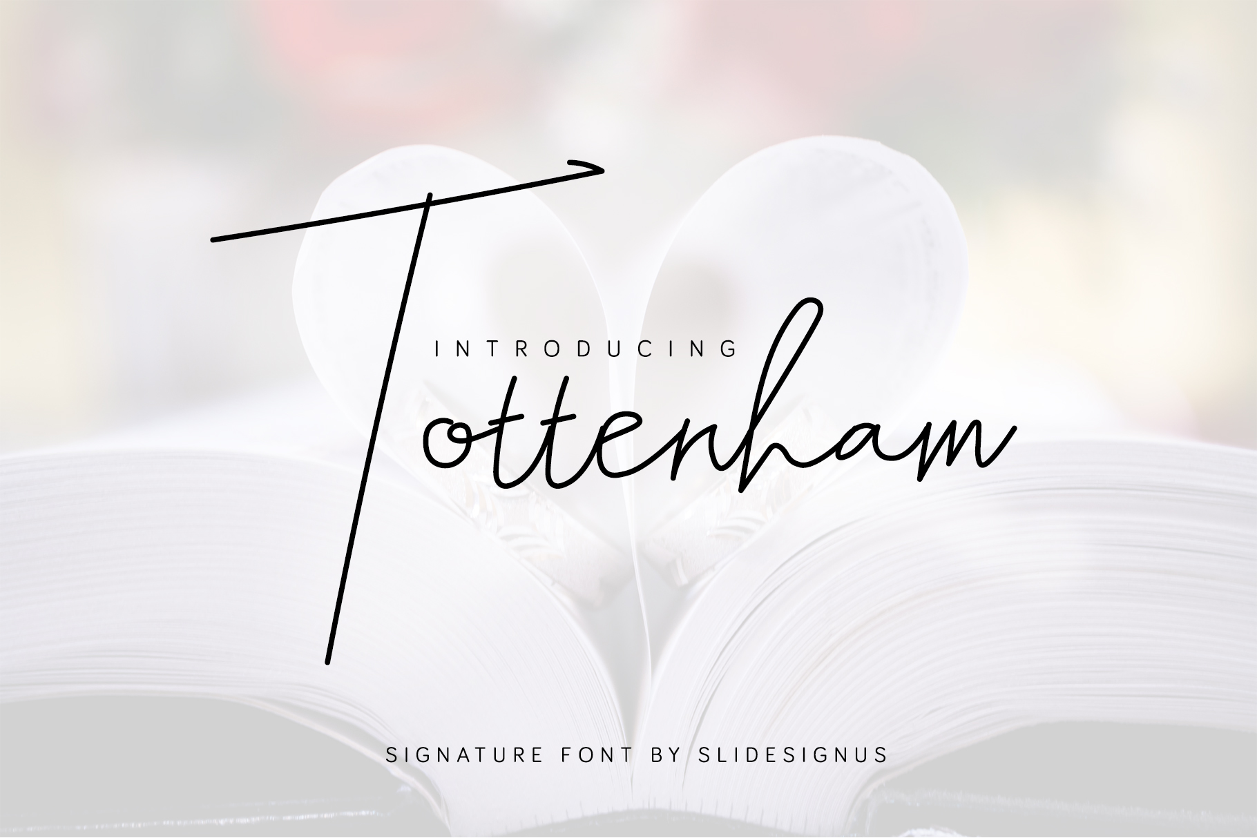 Tottenham Script Font example image 1