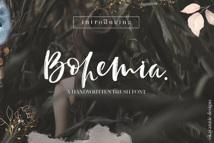 Bohemia - A Brush Script Font example image 1