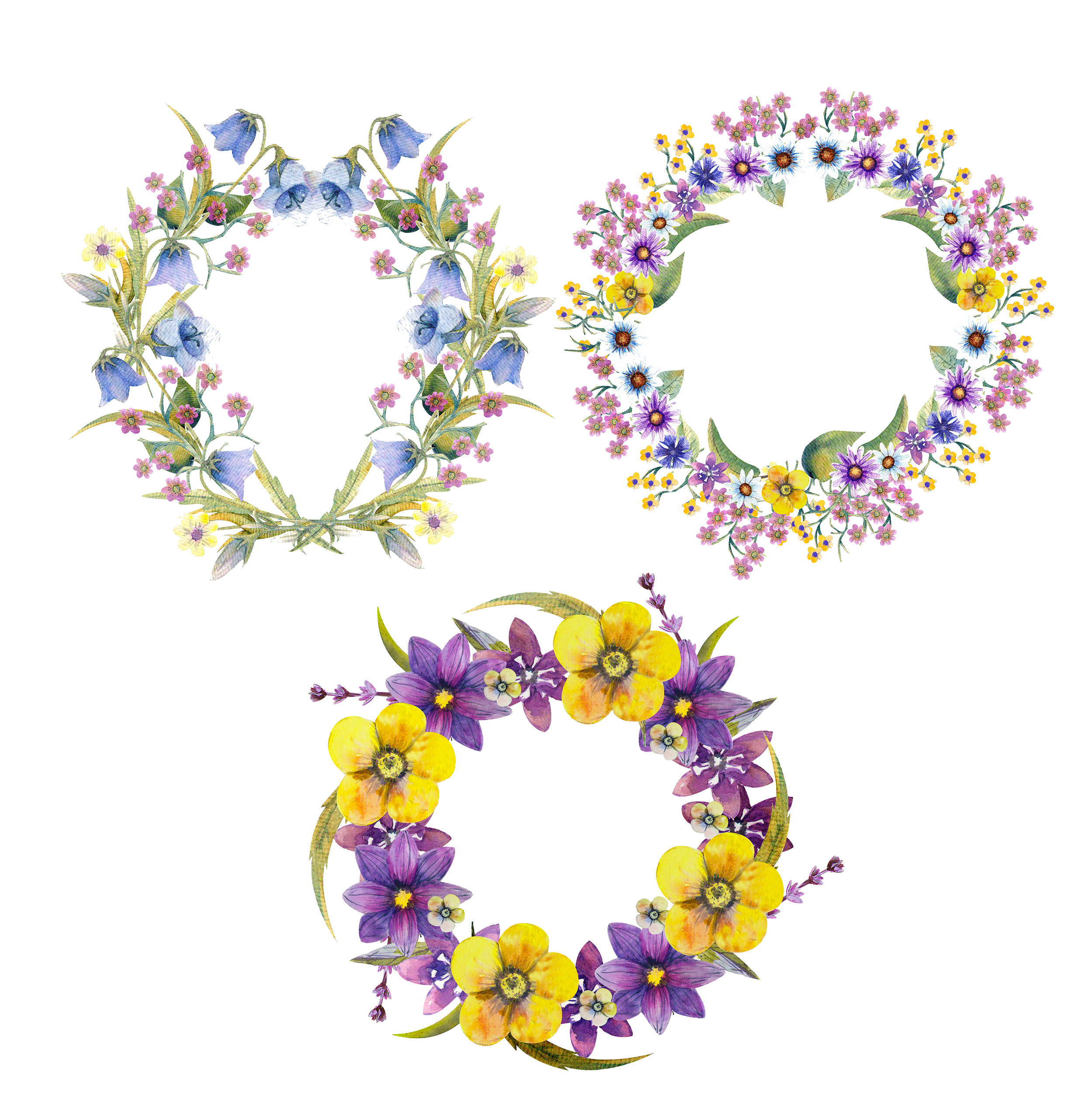 Wild flowers watercolor example image 9