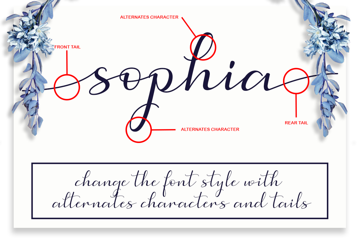 Simphony Caligraphy Font example image 7