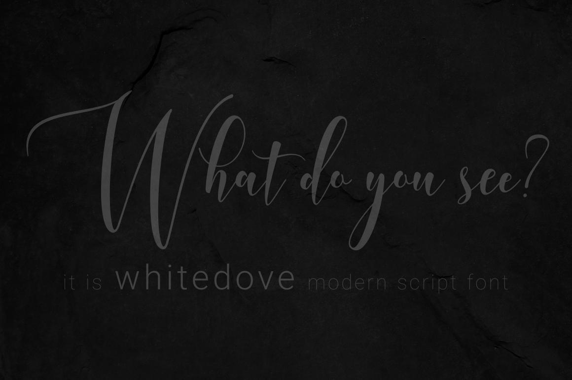 Whitedove Modern Script example image 12