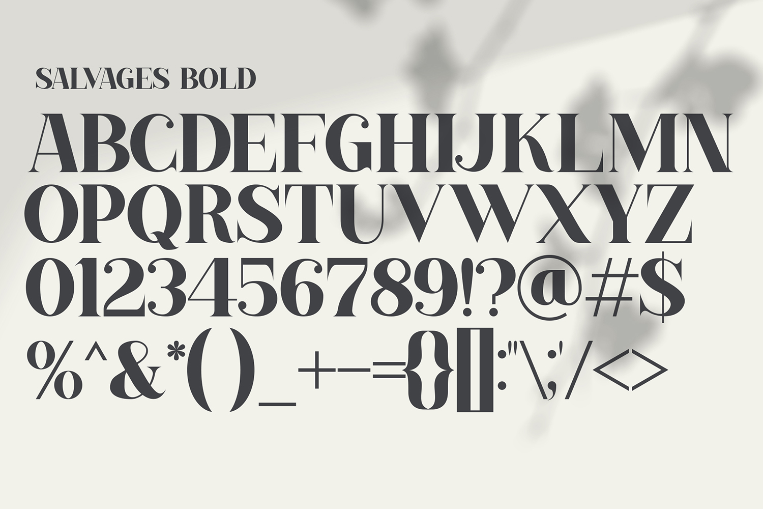SALVAGES BOLD | SERIF FONT example image 9