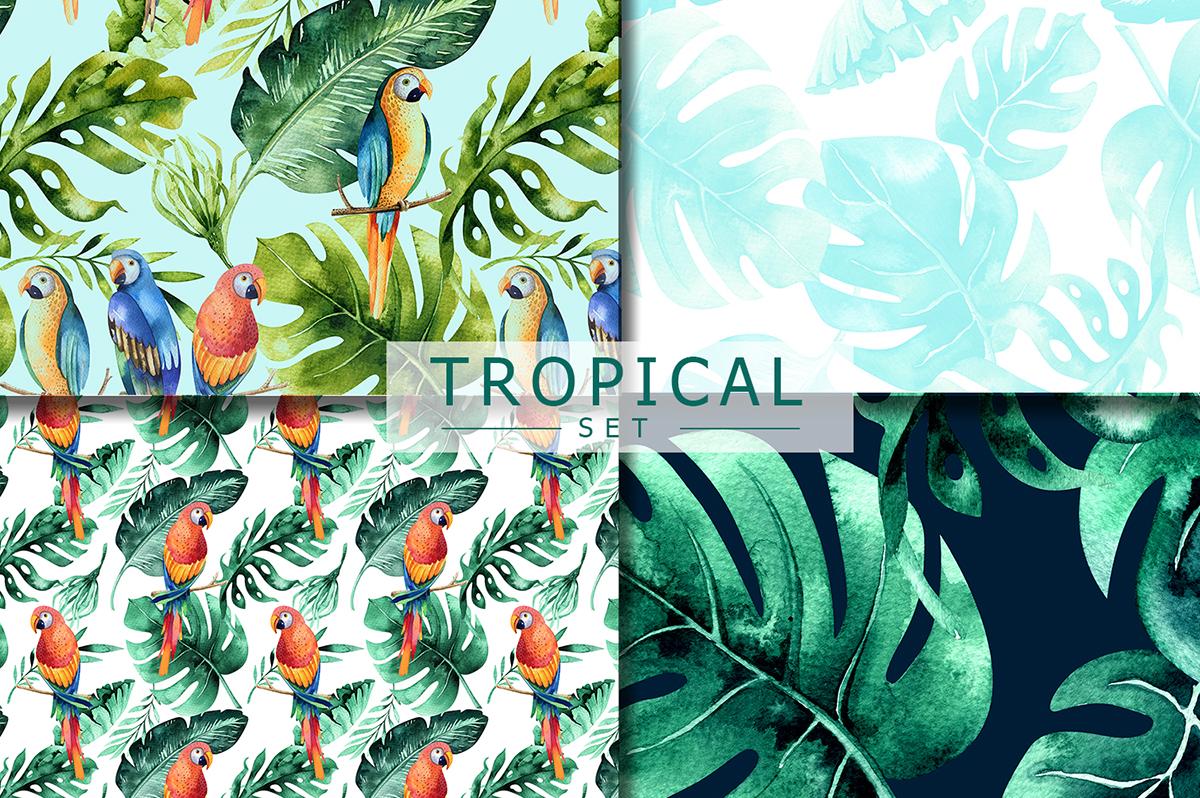 Tropical set I example image 3