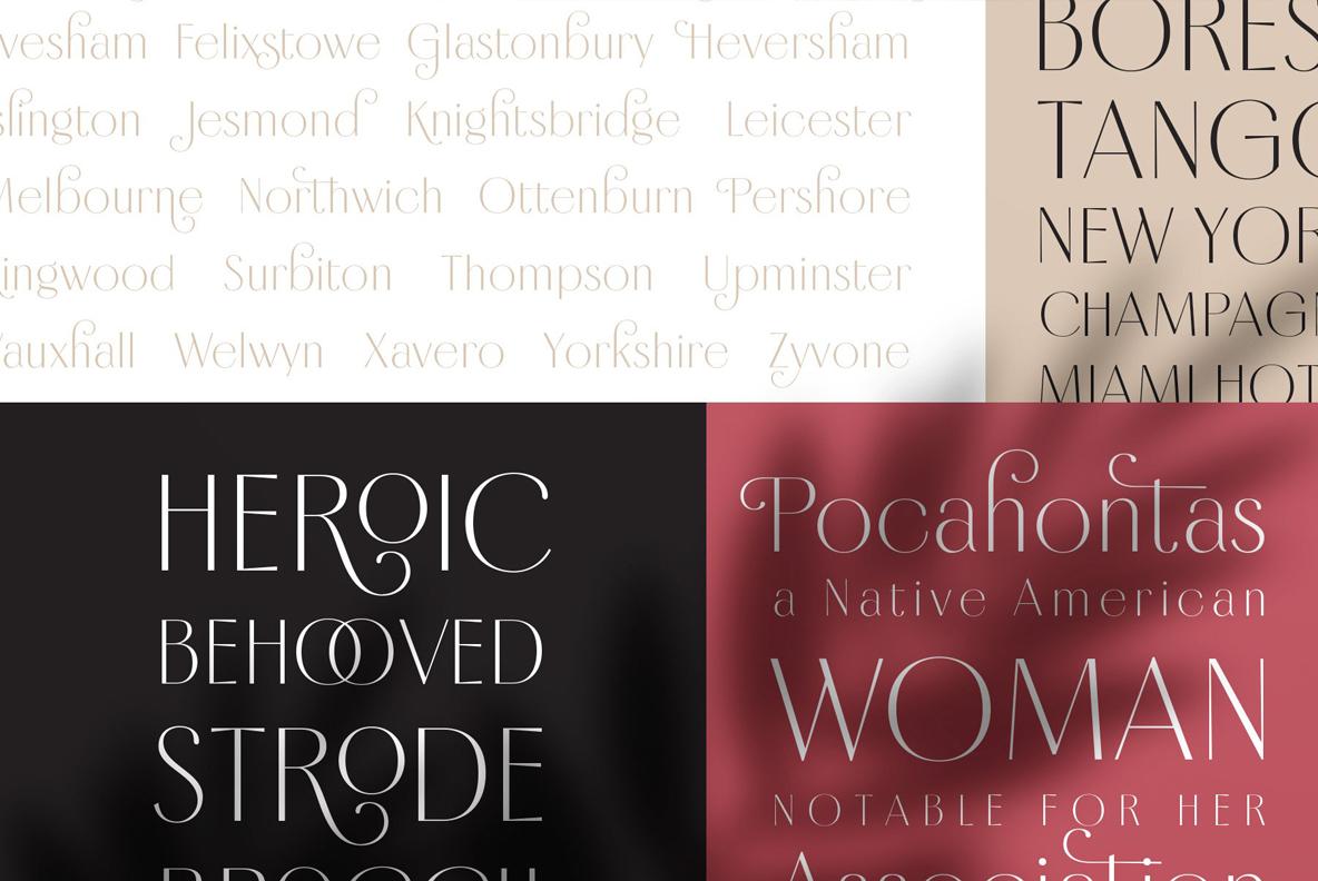 Borest - Elegant Roman Sans Serif example image 4