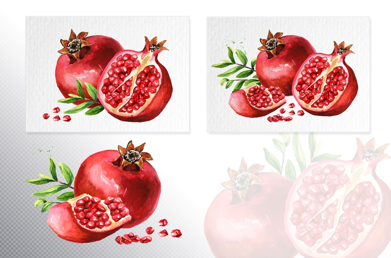 Pomegranate. Watercolor collection example image 5