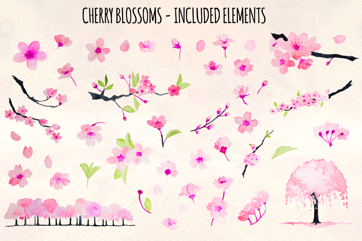 Cherry Blossoms 46 Floral Pink Sakura Elements example image 2