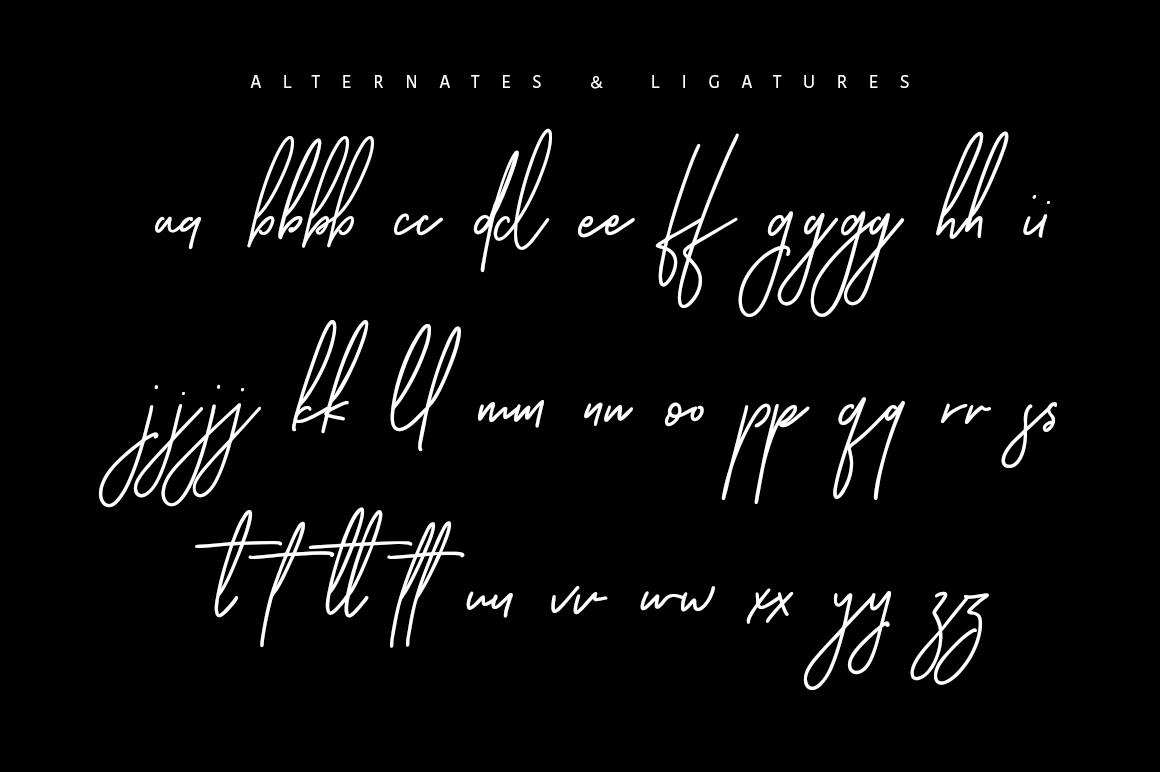 Ansterdam - Clean Signature Font example image 10