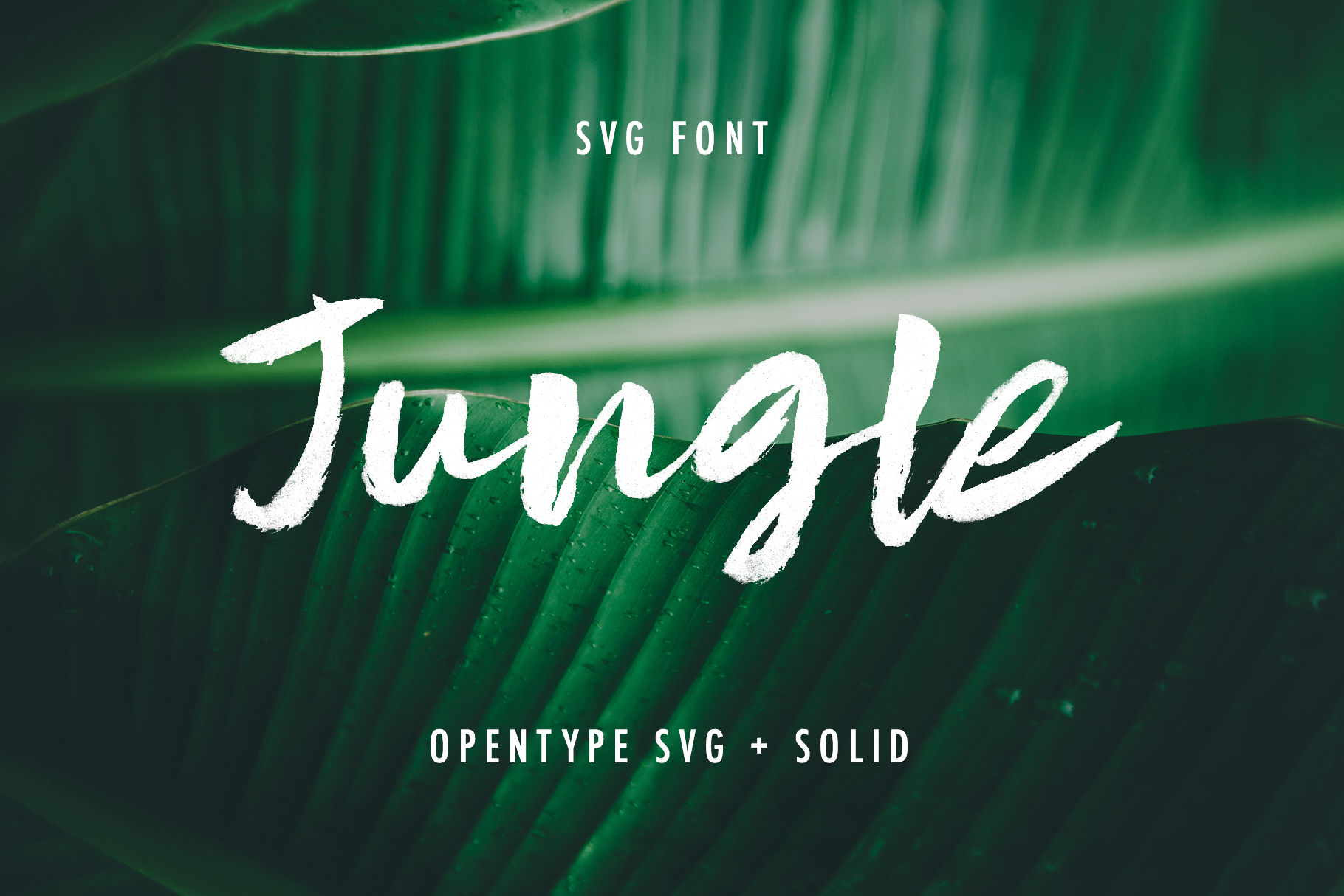 Jungle SVG and Solid example image 1