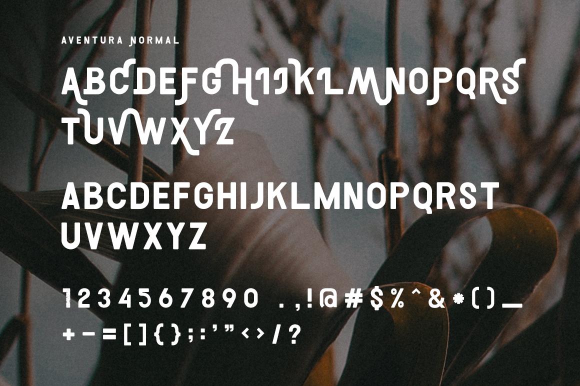 Aventura example image 3