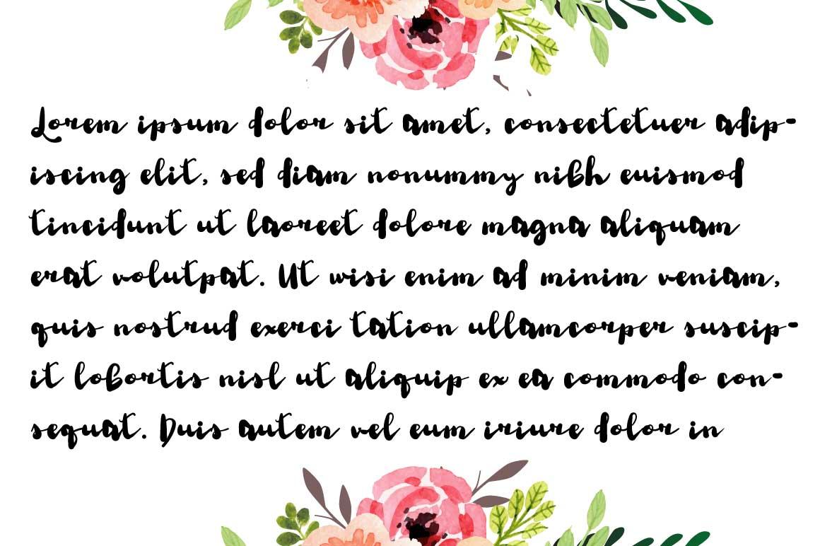 Sureli Script Font example image 2