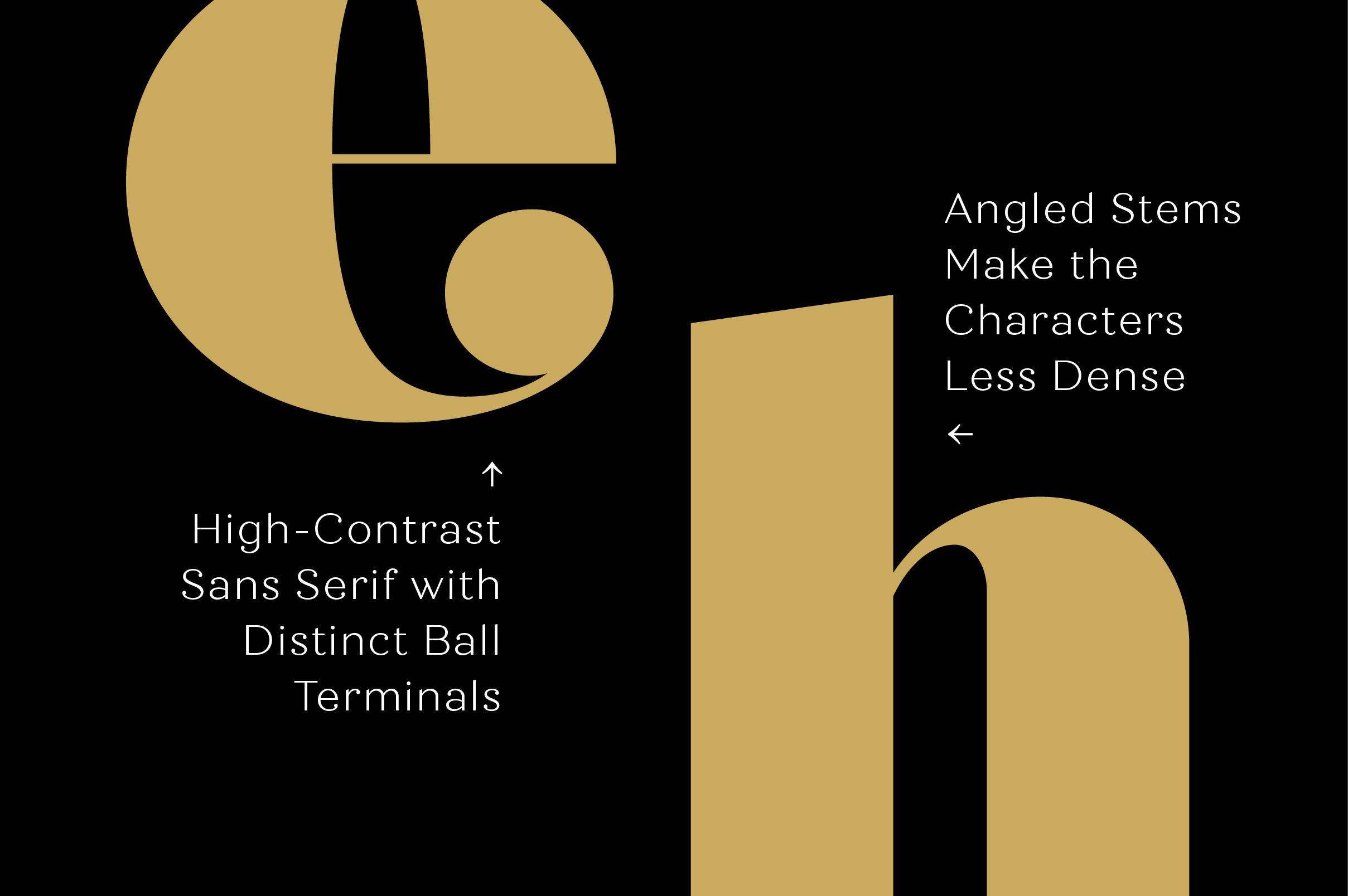 Quiche Fine Black Font example image 5