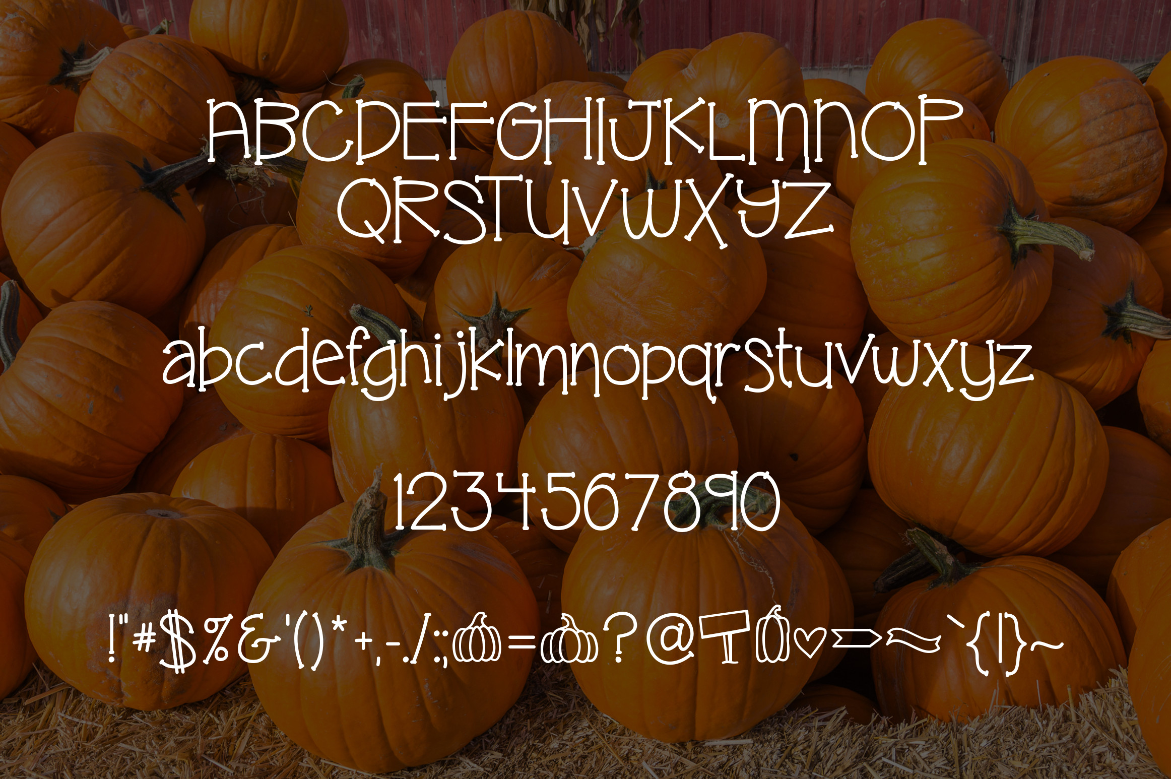 Pumpkin Patch a Fun Serif Font example image 2
