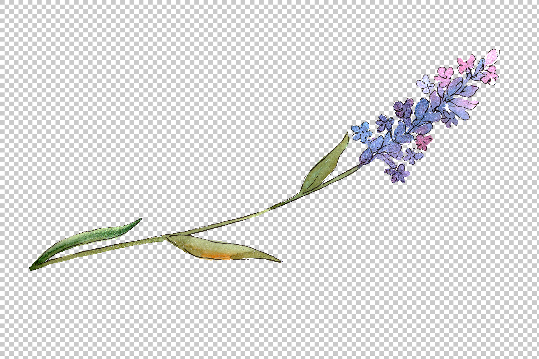 Bouquet of idyll lavender Watercolor png example image 6