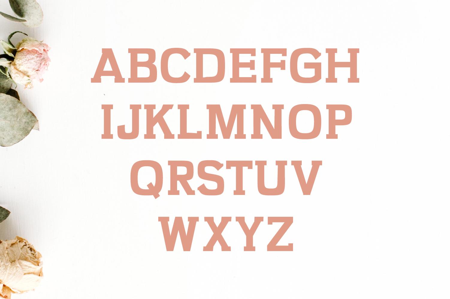 Kaayla Slab Serif 4 Font Pack example image 2