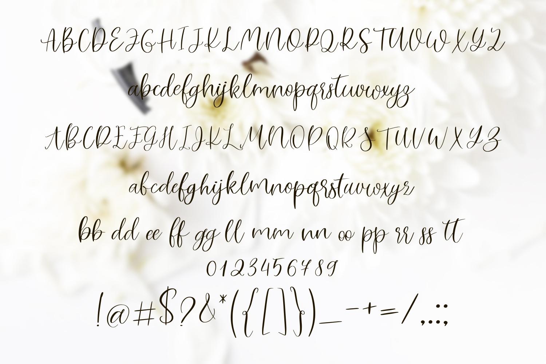 Lovely white. Romantic script font example image 5