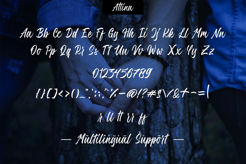 Attina example image 7