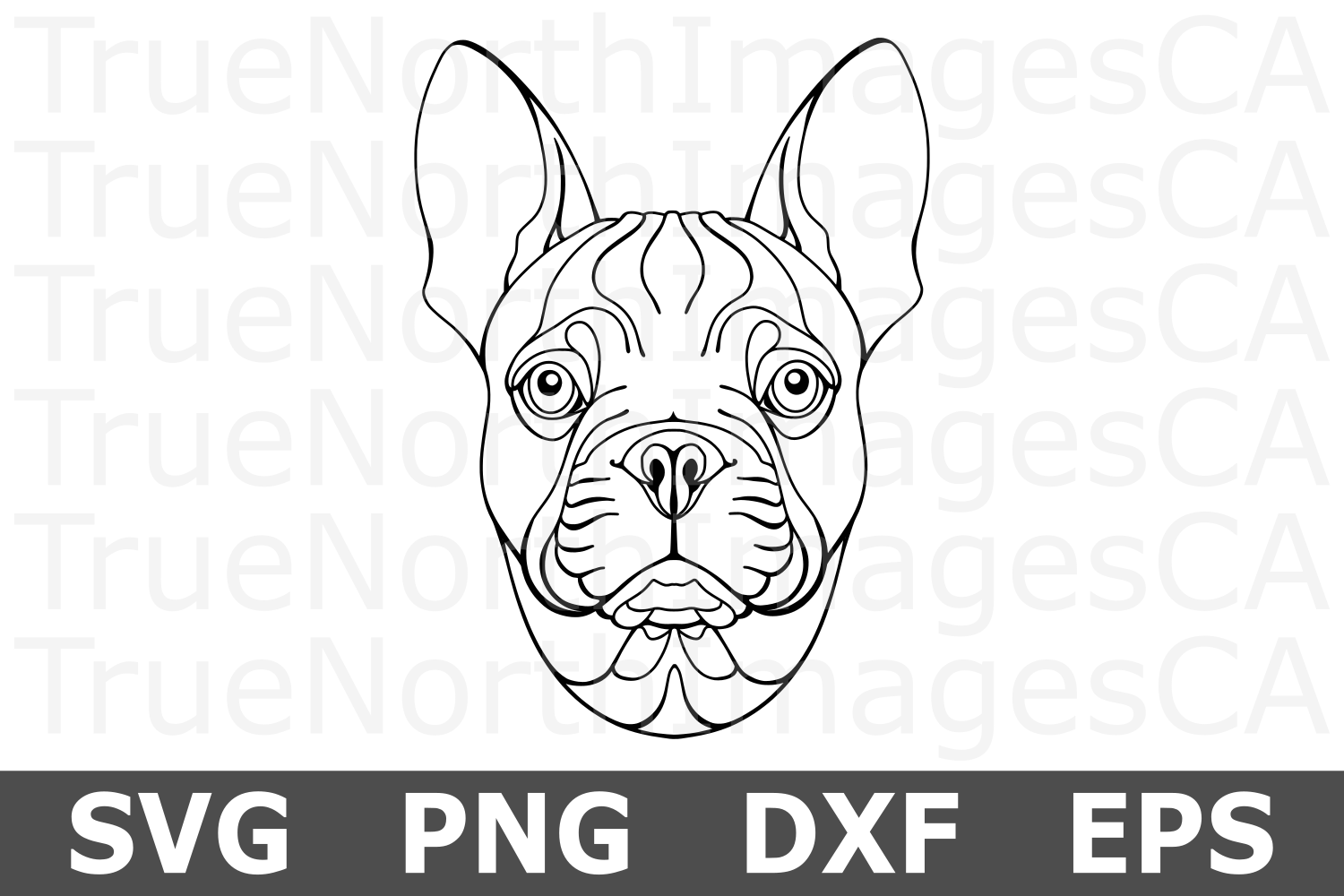 French Bulldog - An Animal SVG Cut File example image 1