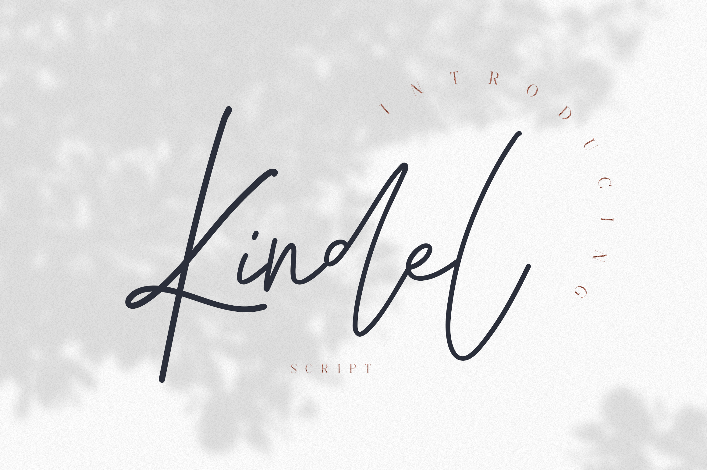 Kindel - Completed Collection example image 18
