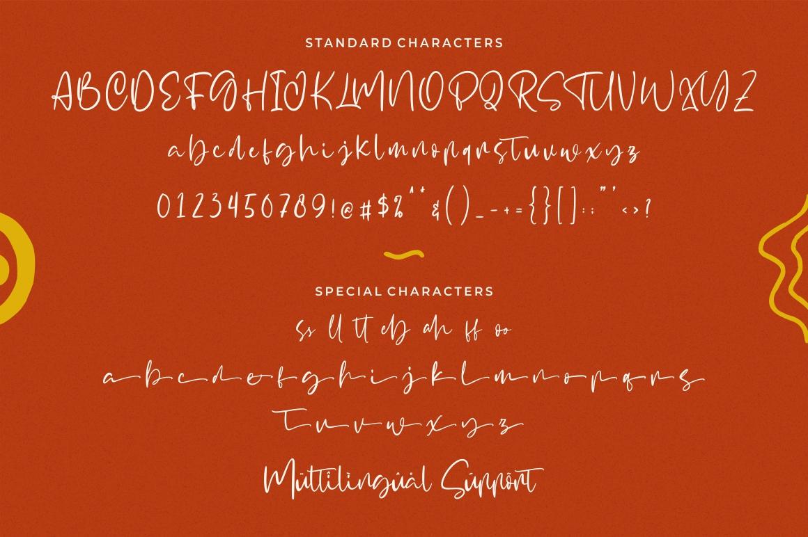 Signtype - Modern Script example image 8