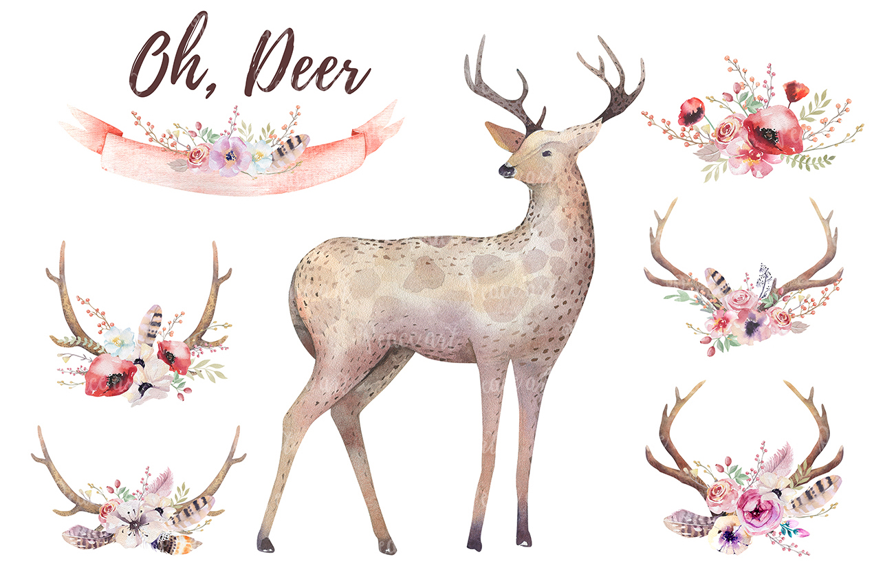 Watercolor deer and horns. Bohemian example image 4